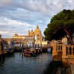 Venezia*