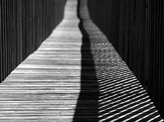 Boardwalk Shadows (Andrew Morrell Photography) Tags: vacation bw 15fav 510fav texas shadows perspective boardwalk portaransas