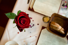 Rose (mrjoro) Tags: california holiday flower crimson rose table lunch restaurant lenstagged heart unitedstatesofamerica fromabove utata valentines canon5d losgatos valentinesday starred canonef24105f4l