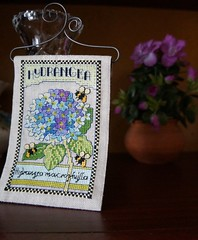 Hydrangea cross stitch (katarishko) Tags: flowers crossstitch needlework handmade embroidery pointdecroix bordado broderie pontocruz xstitch  ricamo   kreuzstich etamin    kanavie  lesleyteare kanavice  carpiisi