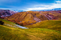 Rolling Hills - New Zealand (aanaravs) Tags: travel newzealand nz otago queenstown lindisvalley aanaravsareen souhisland