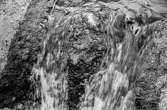 Flow (bhop) Tags: california park leica ltm blackandwhite bw blur film water fountain canon 50mm zoo waterfall san kodak iso400 f14 trix diego rangefinder running safari 400 flowing m6 premium screwmount arista filmisnotdead threadmount