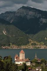 Schloss Spiez ( Chteau - Castle - Ursprung 10. Jahrhundert ) mit Schlosskirche Spiez ( Thunerseekirche - Kirche - Chiuche - church - glise - chiesa - Erstmals erwhnt 762 ) in Spiez am Thunersee im Berner Oberland im Kanton Bern der Schweiz (chrchr_75) Tags: chriguhurnibluemailch christoph hurni schweiz suisse switzerland svizzera suissa swiss kantonbern chrchr chrchr75 chrigu chriguhurni juli 2015 hurni150725 albumschlossspiez schlossspiez spiez berner oberland berneroberland schloss chteau castle juli2015 albumzzz201507juli albumkirchenundkapellenimkantonbern kirche chiuche church iglesia kirke kirkko  chiesa  kerk koci igreja  eglise thunersee see lac lake lago susise kanton bern alpensee s jrvi  albumthunersee schlosskirche schlosskirchespiez glise temple kirchespiez albumregionthunhochformat thunhochformat hochformat castello