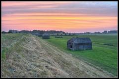 Pink Sky (ronver1960) Tags: holland netherlands fort wolken zomer gras juli roze gelderland culemborg bunkers betuwe hooi everdingen ochtendgloren diefdijk