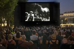 "Die ersten Tage bei Kino unter Sternen • <a style=""font-size:0.8em;"" href=""http://www.flickr.com/photos/39658218@N03/19466234486/"" target=""_blank"">View on Flickr</a>"
