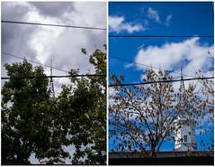 Algunos metros y varios meses de distancia (martinnarrua) Tags: autumn trees sky tree argentina clouds uruguay nikon rboles cloudy cielo nubes rbol concepcin entre nublado ros amateur nikond3100