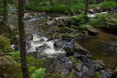 DSC_0511 (JN_Tetreault) Tags: trees water creek landscape waterfall woods nikon rocks stream outdoor connecticut ct funday waterfalls daytrip newthings nikoncamera deepinthewoods d7100