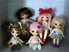 Two and a half pukis plus two and a half Lati whites equals . . . (Ayla160 >^..^<) Tags: white rose ball doll lily tan bee tiny belle bjd bianca ruby hybrid fairyland felicity jointed lati pukipuki