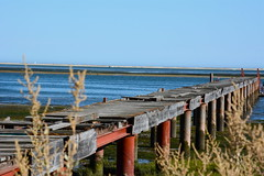 un ponte per la felicità (quercus cerris) Tags: bridge nikon mare blu ponte algarve acqua sud portogallo penisolaiberica nikond7100 riservanaturaleriaformosa