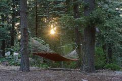 Lazy Day (Eddie Yerkish) Tags: california camping trees camp sun lake mountains nature landscape outdoors tents nikon day hiking trails lazy hammock sunburst dogwood campground arrowhead sequoia d7000