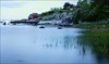 Detail From Larkollen (Eline Lyng) Tags: larkollen norway leica 50mm sea m240 nature longexposure coastline seascape leicam240 aposummicron50mmf2 seagrass