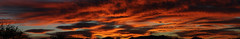 Sunrise 11 16 16 #42 Panorama (Az Skies Photography) Tags: sun rise sunrise morning dawn daybreak sky skyline skyscape clouds cloud red orange yellow gold golden salmon black canon eos rebel t2i canoneosrebelt2i eosrebelt2i rio rico arizona az riorico rioricoaz arizonasky arizonaskyline arizonaskyscape arizonasunrise november 16 2016 november162016 111616 11162016