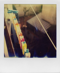 One leader for them all (ale2000) Tags: polaroid impossible instant sx70 instantphotography analog analogue 2017 firstoftheyear multicoloured hangers ckothespins pins perspective fugue suspended hanged hanging framed frame line leader leaderofthepack azzurro blue lined allineati fila mollette plastic plastica domestic everyday dailychores