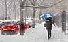 First snow fall of the year 2016 in Brooklyn.. (DUMAN`S through the lens) Tags: umbrella snow weather cold woman sidewalk street people winter trees