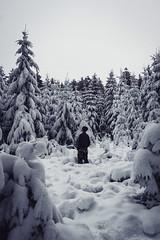 Schneeverhangen (Kevin Kistermann) Tags: schnee snow winter wood woods wald eifel national geographic germany deutschland nature natur vsco canon man lonely
