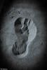 Footprint in the sand (Thad Zajdowicz) Tags: blackandwhite footprint sand beach concept black white bw monochrome vignette light shadow zajdowicz venicebeach losangeles california canon eos 5d3 5dmarkiii dslr digital lightroom outside outdoor texture ef24105mmf4lisusm