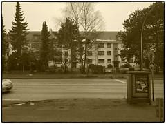 Nu is Sense (/Reality Scanner/) Tags: germany deutschland hamburg panasonic lumix gx80 sepia bw sw strase street haus wohnhaus house appartementhouse asphalt bogenlampe bäume trees zaun fence fenster windows winter city urban monochrome guessedbyarneries guessedhamburg