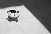 At noon (Sappho et amicae) Tags: cat shadow minimalism sapphoetamicae željkagavrilović canon450d