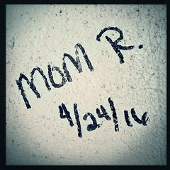 Mom R. graffiti (yosmama151) Tags: wichitamountainswildliferefuge wichitamountains snow snowy road trees plains greatplains prairie iphone iphone6s mobilephotography iphoneography iphoneographer oklahoma lawton graffiti hipstamatic hipstamaticapp wonderlens w40film