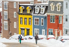 St. John's Winter (Karen_Chappell) Tags: stjohns jellybeanrow house houses colourful multicoloured people winter snow january canada newfoundland nfld downtown city cold colours colour buildings homes yellow blue brown red black white avalonpeninsula atlanticcanada urban cars