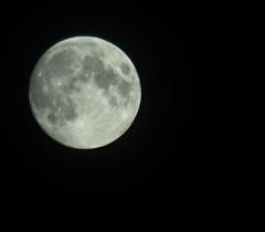 Full Moon (Shantasphotos) Tags: midnight full moon stars night