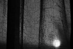 IMGP1436 (i'gore) Tags: montemurlo tende finestre sole casa