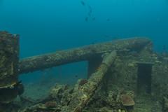 _MG_7298 (Stig Sarre) Tags: thistlegorm red sea redsea egypt scuba diving scubadiving dykking wreck vrak