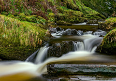 Enchanting Falls (Anthony White) Tags: wales unitedkingdom gb water waterfall moss rocks longexposure powys march march2016 montgomeryshire parish denbighshire enchanting peace berwyn mountains llanrhaeadr tallestsingledropfall