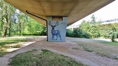 Dzia Krank / Anderlecht - 3 juli 2015 (Ferdinand 'Ferre' Feys) Tags: brussels streetart graffiti belgium belgique belgië bruxelles urbanart graff brussel graffitiart bxl arteurbano artdelarue dzia urbanarte dziakrank