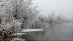 Am Teich / At the pond (ludwigrudolf232) Tags: badesee frost winter rraureif