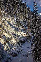 _DSC1610 (andrewlorenzlong) Tags: canada alberta johnston canyon johnstoncanyon