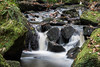 Padley Gorge 7 (21mapple) Tags: padleygorge padley gorge nationaltrust nt national trust water waterscape waterfall rocks canon750d canon canoneos750d canoneos countryside landscape