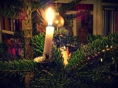 Candles | Kerzen (André-DD) Tags: weihnachten christmas dekoration decoration kerzen candles kerze candle weihnachtsschmuck weihnachtsbaum christmastree tree baum christbaumschmuck christmastreedecorations