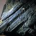 Fault slickensides (Biwabik Iron-Formation, Paleoproterozoic, ~1.878 Ga; Thunderbird Mine, Mesabi Iron Range, Minnesota, USA) 4