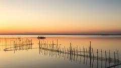 Atardecer en la albufera de Valencia (canonixus1) Tags: atardecer sunset albufera valencia cañas paisajes landscapes canonixus1 canon6d canon1740 artesdepesca