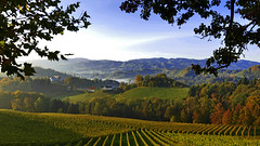 Sonnenaufgang in den Winbergen bei Nebel (Samoth Reschim) Tags: southstyria austria wine winery areanearleutschach autumn fall fog foggy wineyards trees forest travel tourism walking hike sunrise sunset morning colors silence quiet mystic elevatedview view refelection