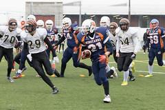 4D3A2989 (marcwalter1501) Tags: minotaure tigres strasbourg footballaméricain football sportdéquipe sport exterieur match nancy