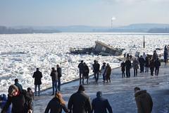 Frozen Danube (vladobgd) Tags: dunav denube river srbija zemun evropa weather ice froyen led januar