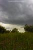 Tormenta en Valdepinar II (Chema Fuentes Fdez) Tags: tormenta primavera amapola nubes verde paisaje monte valdepinar