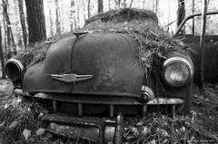 Old Car City on film (dpsager) Tags: bw chevrolet dpsagerphotography f1n film ga georgia kodak oldcarcity tmax100 junkyard