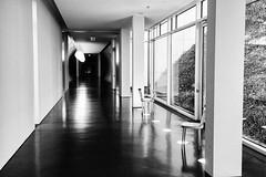 2016-12-M Monochrom-L1013341 (Meine Sicht) Tags: arp bergischgladbach blackandwhite bw fotokunst künstlerbahnhof leica leicam messsucher museum rauen rolandseck sw vollformat dada monochrom schwarzweiss wwwrauenfotode distagon3514zm zeissdistagont1435zm