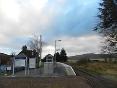 Achanalt Railway Station, Highlands of Scotland, Jan 2017 (allanmaciver) Tags: achanalt railway station remote scotrail trees platform request kyle line scenery mist rain low shadows allanmaciver