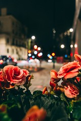 Urban flowers (mougrapher) Tags: ifttt 500px urban lights vsco architecture street night photography light city building cityscape london england uk blue travel cars flowers nature città londra inghilterra