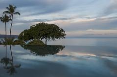 Serenity (fenicephoto) Tags: reflections serenity hawaiimauiwailea2015