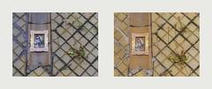 Find the Differences: Last Day of Spring / First Day of Summer (2) 20. June / 21. June - Latex Gloves in my Golden Frame, Tuberculosis Sanatorium, Mirror Ground Spiegel Grund Lungenheilanstalt Pavillon Annenheim Am Steinhof - Frhling Sommer (hedbavny) Tags: vienna wien summer white art wet water rain yellow studio found gold austria mirror sketch sterreich spring wasser hand finger sommer spiegel kunst diary jahreszeit sketchbook gelb workshop frame latex gummi psychiatrie tagebuch find dropped regen krankenhaus rahmen schmutz frhling atelier fund kleidung nass baumgarten rosine trove lwenzahn workingroom narrenturm handschuh werkstatt kleid penzing gugelhupf weis skizze gewand htteldorf steinhof steril arbeitsraum skizzenbuch lungenheilanstalt abgelegt ottowagnerspital sommersonnenwende einweghandschuh lungenentzndung spiegelgrund disposableglove hedbavny latexhandschuh ingridhedbavny untersuchungshandschuh