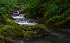 Nant Gwernol, Abergynolwyn, Wales (christaff1010) Tags: uk longexposure panorama green water wales river landscape waterfall unitedkingdom britain snowdonia gwynedd abergynolwyn flickrunitedaward