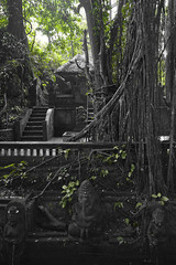Temple in the jungle... (Bahanick (Nxt Up: Manu, Per)) Tags: camera original light bali art colors up look stone composition contrast dark indonesia religious temple for reflex seaside ancient asia raw foto with arte bright image good picture shapes statues buddhism saturation su bud visual hinduism emotions per curiosity colori sculptures con carvings luce forme barong denpasar sensation riflesso composizione scuro sensazioni immagine emozioni chiaro tonality visivo