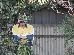 Cardboard Man Hiding in Garden (mikecogh) Tags: man garden hidden cardboard figure curious cumberlandpark oddweird