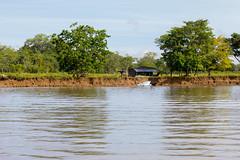 Costa Rica (jorge.cancela) Tags: costa rica america rio river humedal nacional térraba sierpe