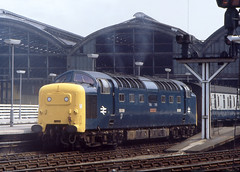 Good to Go... (SydPix) Tags: 55009 class55 alycidon deltic hull paragon station terminus diesel locomotive railways trains sydyoung